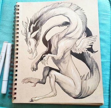 Discord in Ink by DragonSpirit469