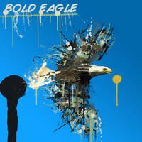 Bold Eagle by K33ph3R