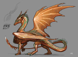 Copper Dragoness by KaiserFlames