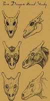 Pernese Dragon Head Study by KaiserFlames