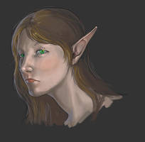 Female Elf Portrait by KaiserFlames