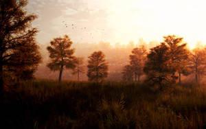 Autumn Mist by subfo