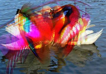 water bird heart by hearthaert