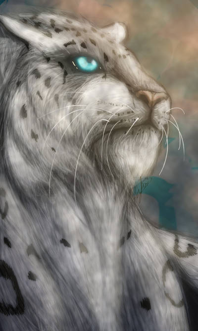 Snow Leopard by Hoppety