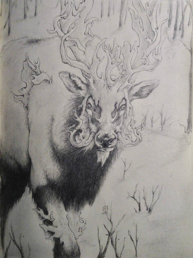 Elk by Alicia-Imagination