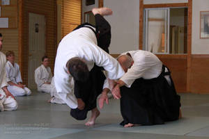 Martin Katz Aikido 20110520 14 by CharlesSmithOrg