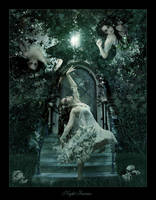 Night Fairies by VvBornOfDesirevV