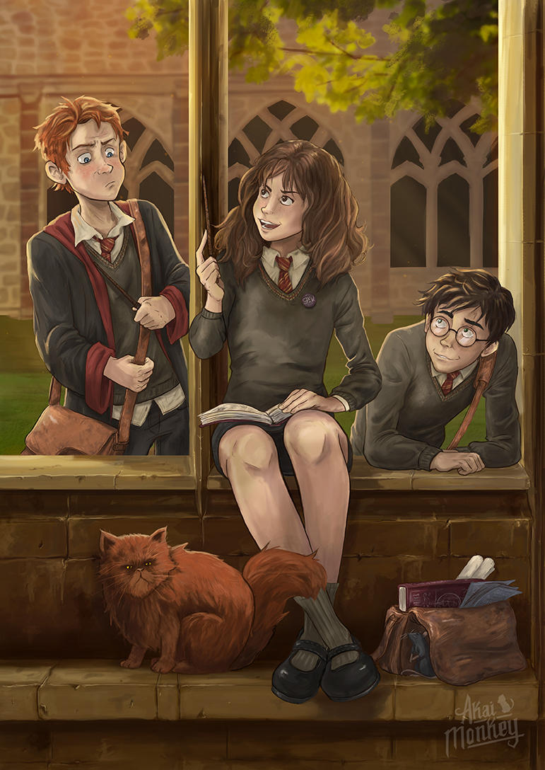 Harry, Hermione and Ron by Akai-Monkey