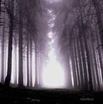 karanligin son nefesi by emekuc
