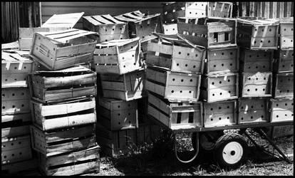 Box Pile by EatsNoCheese