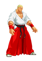 geese howard by ice-vision