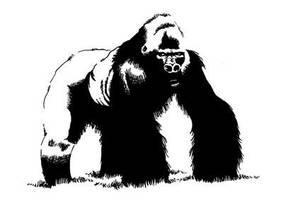 Gorila by waltertierno