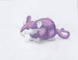 December 1st 2012: Rattata by UltimateSassMaster
