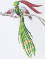 December 14th 2012: Xatu by UltimateSassMaster