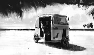 Fox - Tuktuk by jamajurabaev