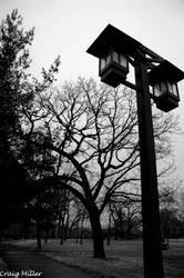 Lamp Post by fargo41
