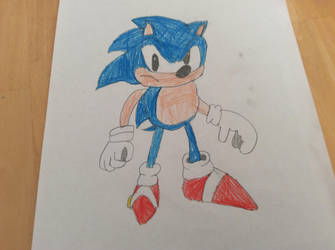 Sonic the hedgehog by Gamecubeboy2005