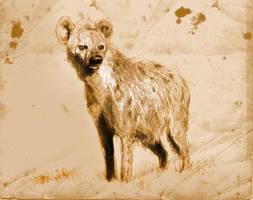 Hyena by SILENTJUSTICE