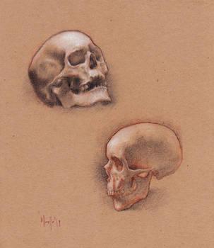 Skulls practice by SILENTJUSTICE