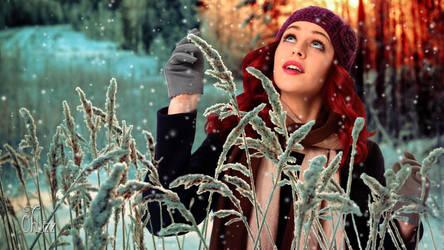 Frosty Garden by OhLizz