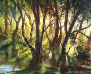 Sunlit swamp - painting WIP by donnaquinn