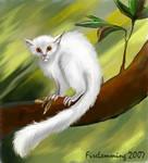 Albino by Simbamarasa