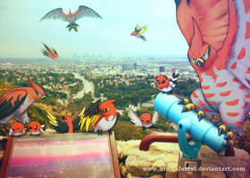 Wild Talonflame family over the city of dream by Ninja-Jamal