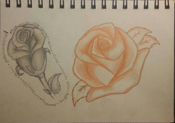 Rose practise by GabrielFuture