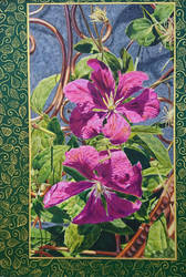 Sun-drenched Clematis by quiltineb