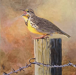 Meadowlark by quiltineb