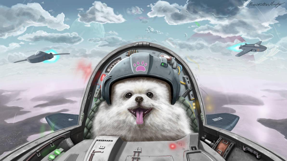 Dog Fighter by BrianJMurphy