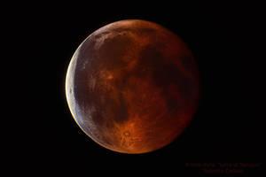 Luna di Sangue by orsoinletargo