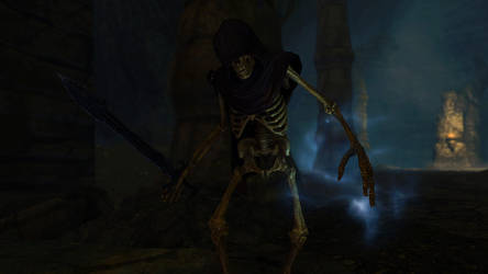 SSE Skeleton by SkyrimMasterrace