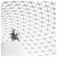 Solitude by xpbc