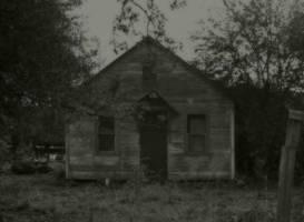 Inside...they wait... by wolfcreek50