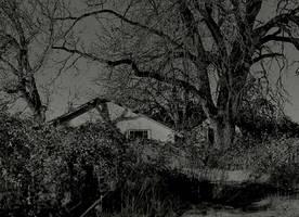 Dark malaise... by wolfcreek50