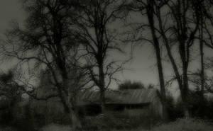 Forlorn... by wolfcreek50