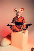 Master Shifu by AsakuraIrma