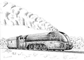 Steam locomotive Pm36-1 by czajka