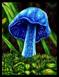 The Blue Mushroom by RobertoBonelli
