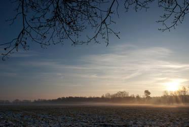 wintermorning by tulawena