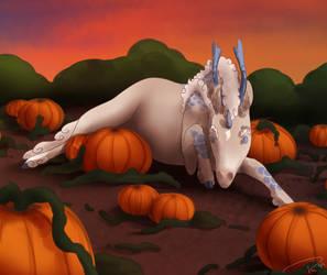 04 Pumpkin Patch by Razalin