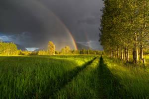 Rainbow Road by lee-orr
