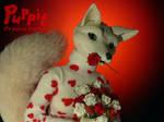 Foxy Valentine's by PuppitProductions