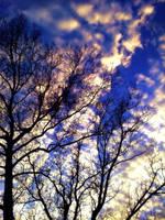 Fall Sky by MimiVengeance