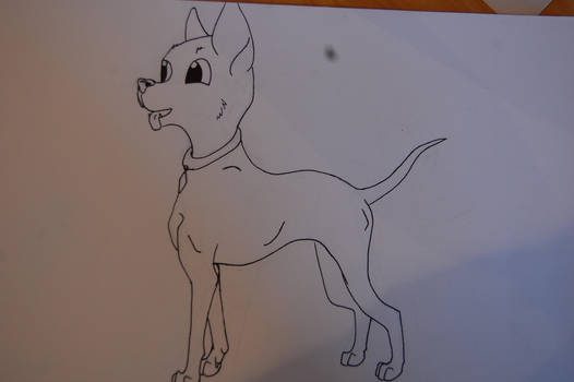 Cartoon Chihuahua by WolfLover666