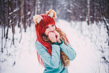 Snowy day of Horo~ by Blairchik