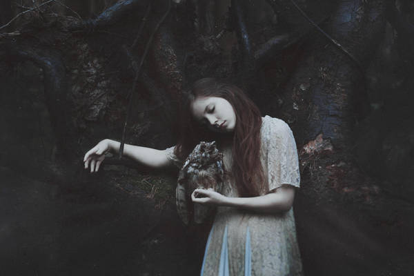 Sleepy Forest by MariaPetrova