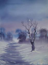 Snow by Haych86