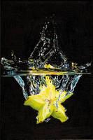 Splash 2 of 3 by the-frozen-bunny
